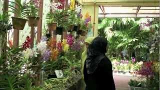 getlinkyoutube.com-Orchid Garden Kuala Lumpur