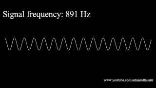 getlinkyoutube.com-20Hz to 20kHz (Human Audio Spectrum)