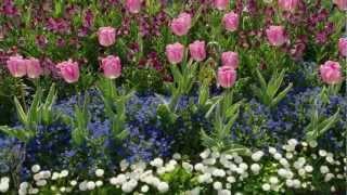 getlinkyoutube.com-Встречайте весну