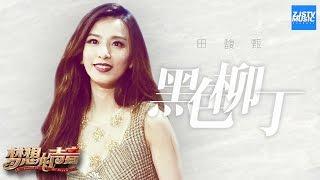 getlinkyoutube.com-[ CLIP ]田馥甄《黑色柳丁》《梦想的声音》第2期 20161111 /浙江卫视官方HD/