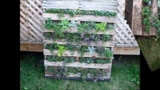 getlinkyoutube.com-Building a Vertical Pallet Garden