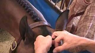 getlinkyoutube.com-free braiding lesson 2