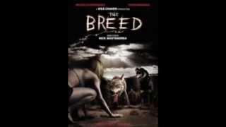 getlinkyoutube.com-Top 10 Dog Horror Movies