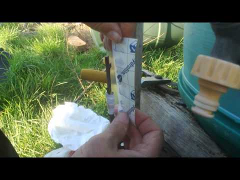 Como injertar un ciruelo
