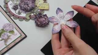 getlinkyoutube.com-'Burst of Splendor' Collection by Heartfelt Creations