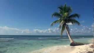 getlinkyoutube.com-Relaxing 3 Hour Video of A Tropical Beach with Blue Sky White Sand and Palm Tree