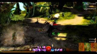 getlinkyoutube.com-Guild Wars 2 Beta - Sylvari Story - Beneath a Cold Moon then The Omphalos Chamber