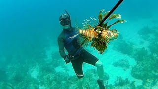 getlinkyoutube.com-Spearfishing Poisonous Lionfish - Bahamas Part 1 (Ted's HoldOver)
