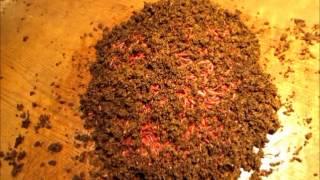 getlinkyoutube.com-The test to become a redworm supplier