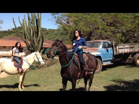 Montando a cavalo
