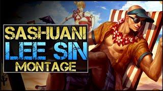 Sashuani - 李星 Montage