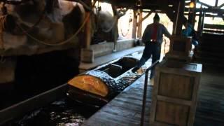 getlinkyoutube.com-Timber Mountain Log Ride - Knott's Berry Farm 2014, the complete experience