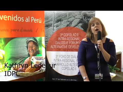Kathryn Ledebur. ANDEAN INFORMATION NETWORK/IDPC