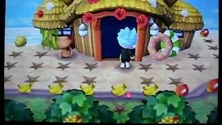 getlinkyoutube.com-(愛と龍の)とびだせどうぶつの森! 簡単裏ワザ!島でも出来る無限増殖!Animal Crossing:New Leaf Bug.更新後は