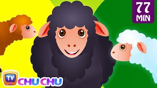 getlinkyoutube.com-Baa Baa Black Sheep and Many More Kids Songs | Popular Nursery Rhymes Collection by ChuChu TV