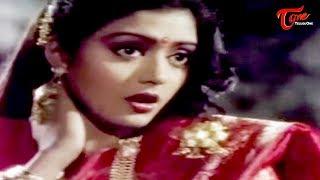 Chiranjeevi Romance with Bhanu Priya || Best Romantic Scene of Tollywood #124