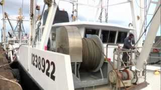 getlinkyoutube.com-A Scallop Boat Tour - The Rost of Eastern Fisheries with Roy Enoksen