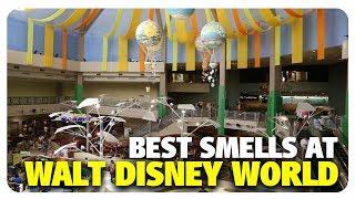 BEST Smells at Walt Disney World   Best and Worst   05/30/18
