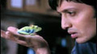 getlinkyoutube.com-Reteish is spellbound - Aladin