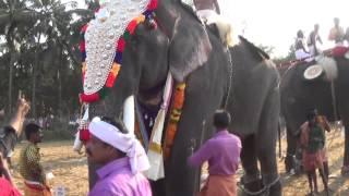 getlinkyoutube.com-Cherpulassery Parthan  At Chiravarambathu Kavu pooram 2015