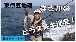 getlinkyoutube.com-正海チャンネル(東伊豆地磯のヒラスズキ)