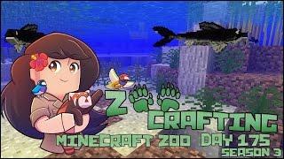 getlinkyoutube.com-Rescuing Buckets of Tiny Catfish!! • Zoo Crafting: Episode #175