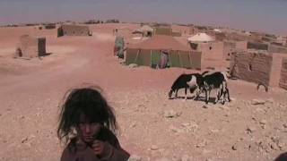 Camp Tindouf 2009