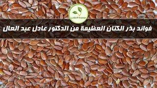 getlinkyoutube.com-بذر الكتان - الدكتور عادل عبد العال