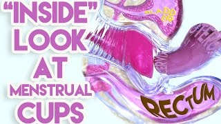 "getlinkyoutube.com-An ""Inside"" Look at Menstrual Cups"
