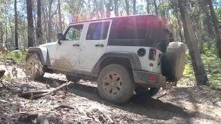 getlinkyoutube.com-Jeep Wrangler Subaru Forester Toyota Rav4 in Wombat State Forest