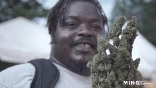 getlinkyoutube.com-Legal Marijuana in Jamaica w/ The Bubbleman
