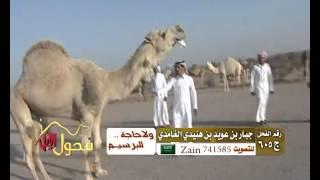 getlinkyoutube.com-الفحل تمام مع شيلة صالح اليامي
