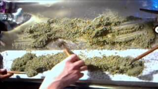 getlinkyoutube.com-Biggest Joint Ever