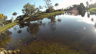 getlinkyoutube.com-Fly Fishing the Doral Golf Course