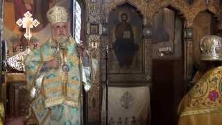 Приветственное слово епископа Тихона Тивериопольского