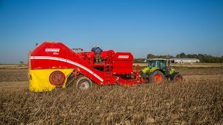 Grimme AirSep - The new separator for potato harvesters