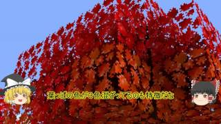 getlinkyoutube.com-【マインクラフト】和風な世界で豆腐と魔術Part1(ゆっくり実況)