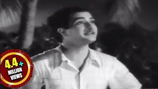 Missamma Movie || Raavoyi Chandamaama Video Song || NTR, ANR, SVR, Savitri, Jamuna