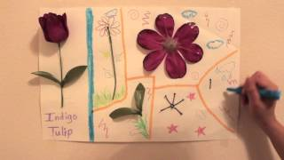 Parts of a Flower for kids