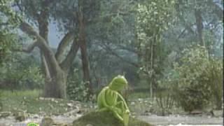 getlinkyoutube.com-Sesame Street: On My Pond