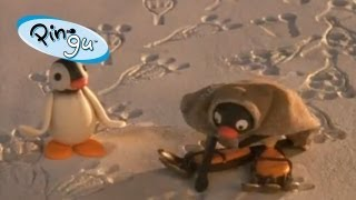 getlinkyoutube.com-Pingu: Pingu and the Abominable Snowman