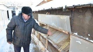 getlinkyoutube.com-Содержание кроликов зимой на кроликоферме Николая Шаталова