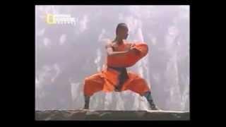 kung fu shaolin 5 tecnicas selectas