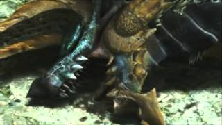 "getlinkyoutube.com-[3DS] Monster Hunter 4 Ultimate -Zinogre ""Ecology""-"