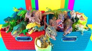 getlinkyoutube.com-Dinosaur Box   T rex Toy Collection   Tyrannosaurus Kids Toys   3D Puzzle Surprise Egg