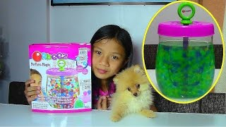 getlinkyoutube.com-Orbeez Perfume Magic Kit Scented Balls - Kids' Toys