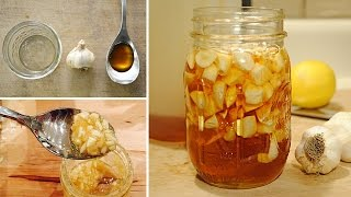 getlinkyoutube.com-Boost Your Immune System with Garlic Infused Honey (recipe)