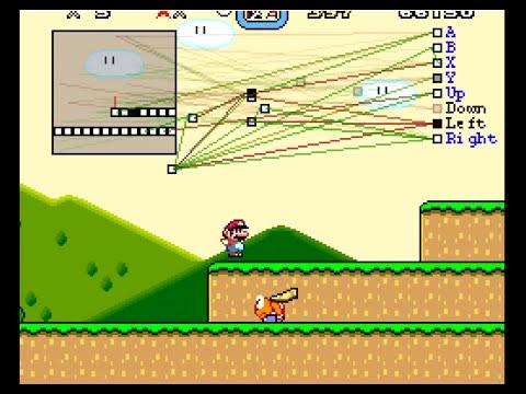 DL Mario