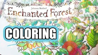getlinkyoutube.com-Coloring Book Journey - 001 Enchanted Forest by Johanna Basford
