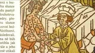 getlinkyoutube.com-Syfilis historie